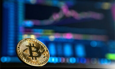 bitcoin i̇çin ayı dönemi yok denecek kadar düşük i̇htimal! 92